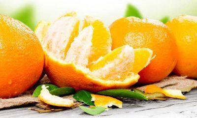 Guía básica sobre naranjas: todo lo que debes de saber